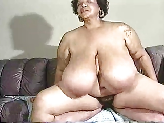 curly aged massive mambos